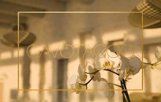 Take a Spin around CAVOTAGOO